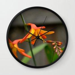 Sunny Crocosmia Wall Clock