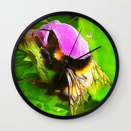 Bumblebee in red dead-nettle with louse Wall Clock