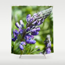 Spring Lupine Photography Print Shower Curtain