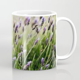 Island Lavender Coffee Mug