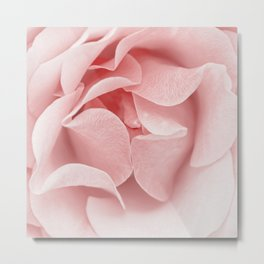 Pink flora Rose Bud- Roses and flowers Metal Print