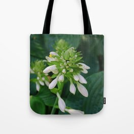 Shallow Illusions Tote Bag