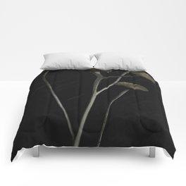 Cross Road Comforters