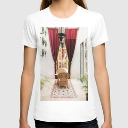 Colonial Style Tea Room in Merida, Mexico T-shirt