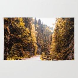 Autumn Mountain Road Rug