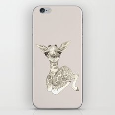Giraffe Baby  iPhone & iPod Skin