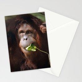 Indah, Sumatran Orangutan  Stationery Cards