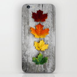 autumn color iPhone Skin