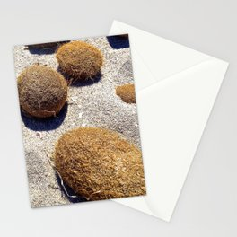 HAIRY COLLECTION (20) Stationery Cards