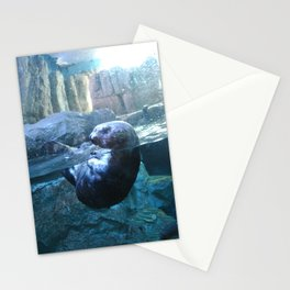 Through Glass :: Otter Stationery Cards