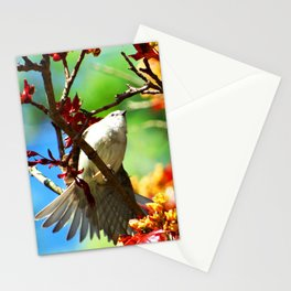 Colors of Spring Bird Stationery Cards