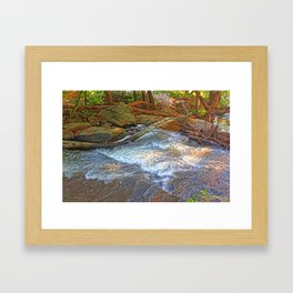 Rock, Wood, Waters Framed Art Print