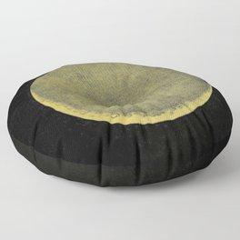Antique Crescent Moon Floor Pillow