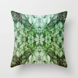 ~°* Awash //in//the// Pleasant ● Perpetual *°~ Throw Pillow