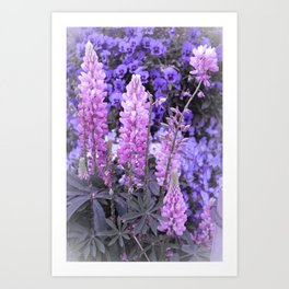 Lively Lupines Art Print