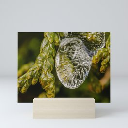 Frozen Rain. Macro Photograph Mini Art Print