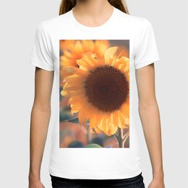 Soon she donates seeds for the birds the sunflower T-shirt