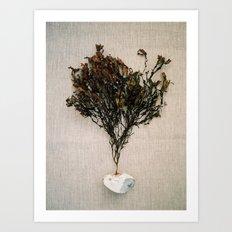 Sea Weed & Rock Art Print