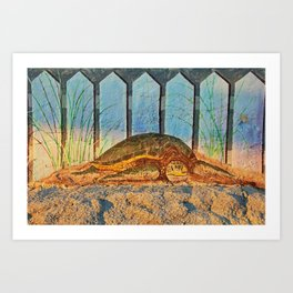 Sea Turtle Fort Myers Breakwall Art Print
