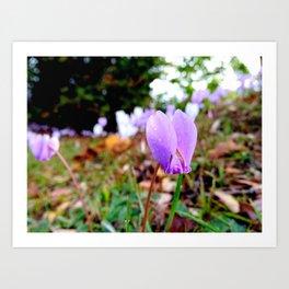 Automn's flower Art Print