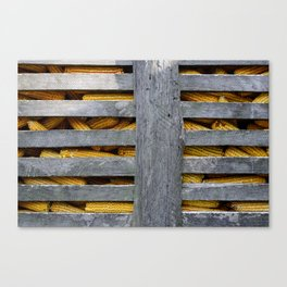 Woods and corn Canvas Print