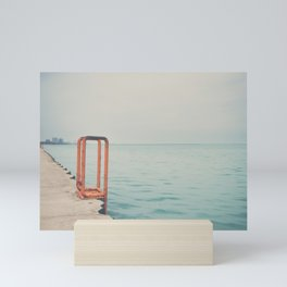 the orange steps ... Mini Art Print