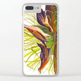 Sora, or Rail Bird Clear iPhone Case