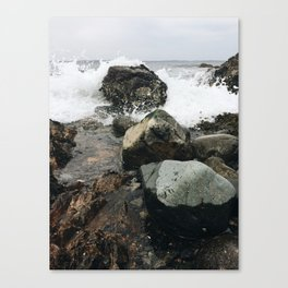 Splash Canvas Print