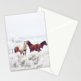 Winter Horseland Stationery Cards