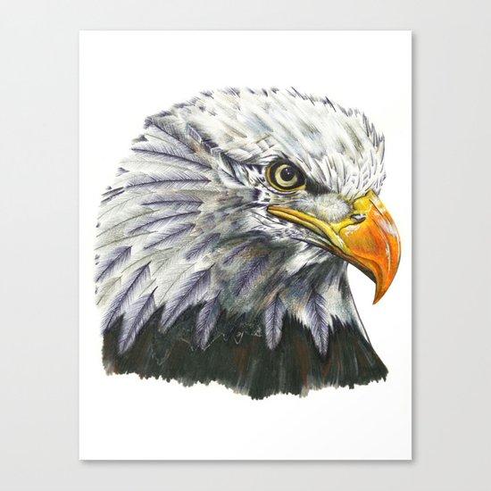 Bald Eagle! Canvas Print