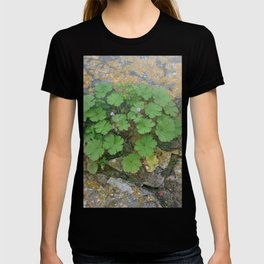 Life on a stone wall T-shirt