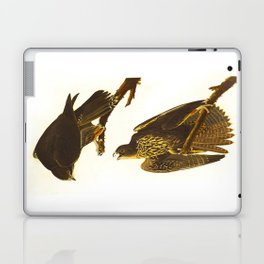 Labrador Falcon Laptop & iPad Skin