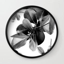 Ficus Leaves Dream #2 #bw #decor #art #society6 Wall Clock