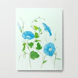 blue morning glory Metal Print