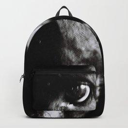Dog's Eye Backpack