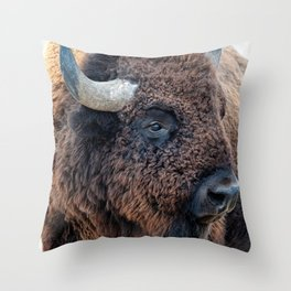 In The Presence Of Bison Throw Pillow