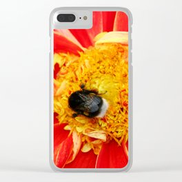Bumble Bee On Dahlia Clear iPhone Case