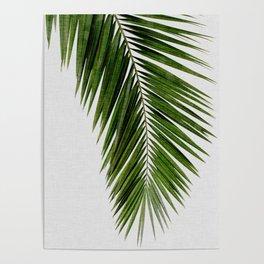 Palm Leaf I Poster