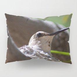 Hummingbird Momma Pillow Sham