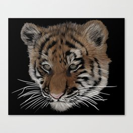 Bengal Tiger Cub Canvas Print