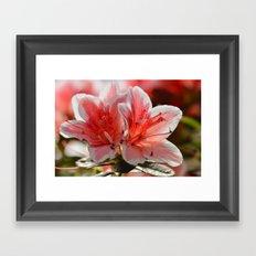 Love flowers 227 Framed Art Print