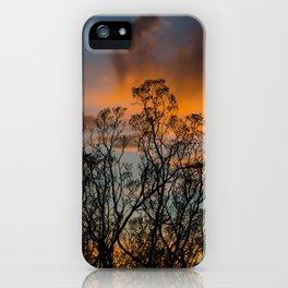 Desert Flora At Sunset - Bush  iPhone Case