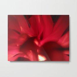 Red Petals 81 Metal Print