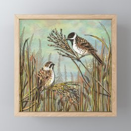 Reed Buntings Framed Mini Art Print