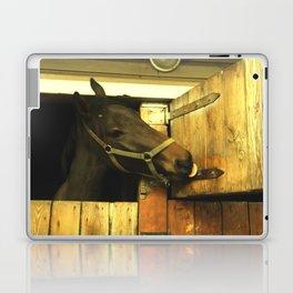 Iron lover Laptop & iPad Skin