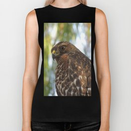 Young Red-Shouldered Hawk in a Desert Willow Biker Tank