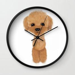 poodle hair cut 2 Wall Clock