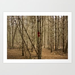 Trail Markers at Ridge Hill Art Print