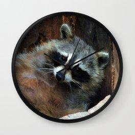 Raccoon Reclining Wildlife Photo Art Wall Clock