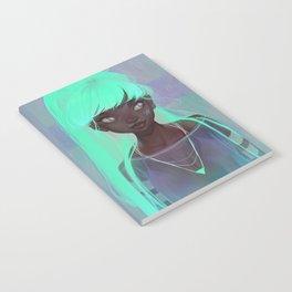 lumen Notebook